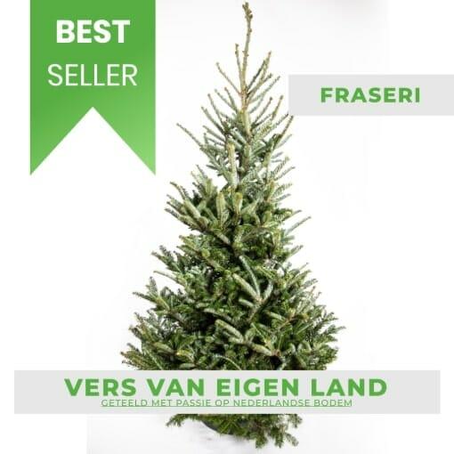 Fraseri kerstboom kopen bestseller