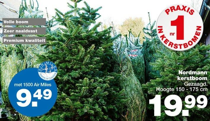 praxis kerstboom kopen aanbieding