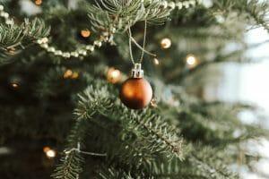 waarom kerstboom
